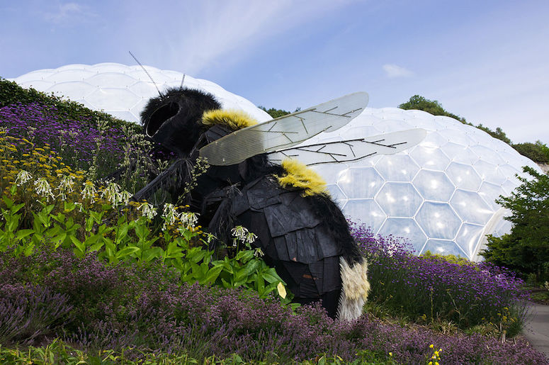 Giant bee in the garden at the Eden Project