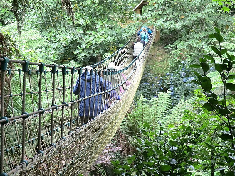 Lost-Gardens-of-Heligan-Rope-Bridge