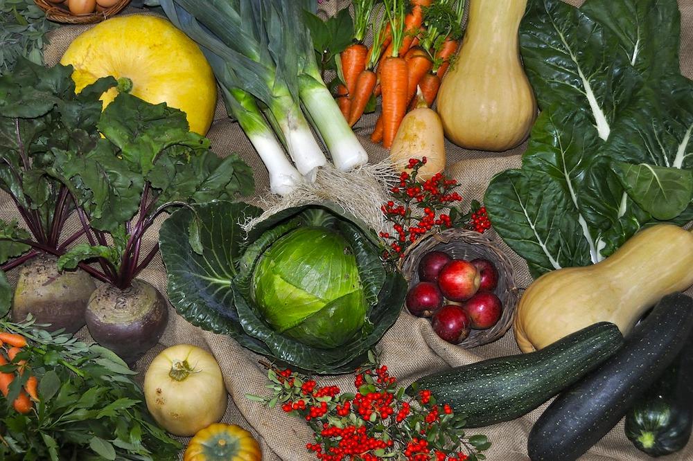 harvest- festival vegetables