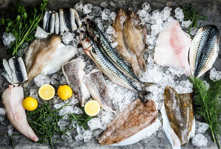 CORNISH FISH BOX