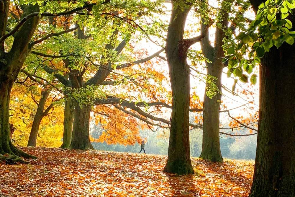 autumn break in Cornwall